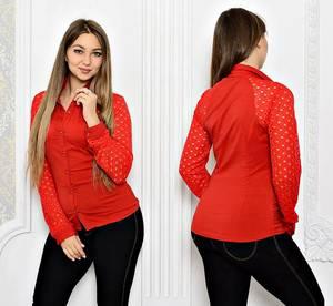 Рубашка красная с длинным рукавом однотонная Т2006