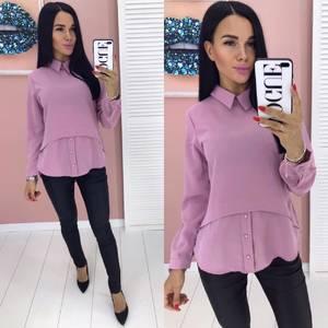 Блуза с длинным рукавом А01921