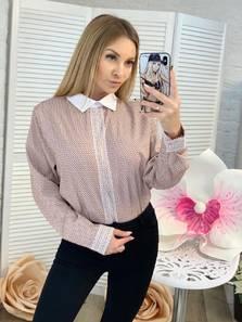 Блуза Ц2317