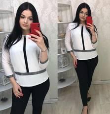 Блуза Ц5561