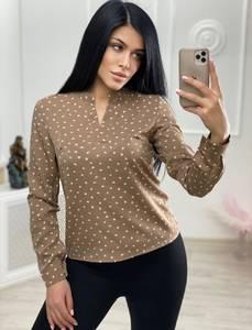 Блуза с длинным рукавом А24726