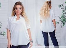 Блуза Ц2118