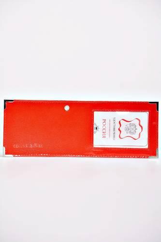 Обложка для паспорта Е0273