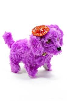 Собака П5816