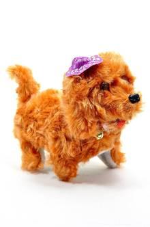 Собака П5817