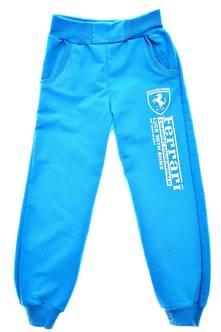 Спортивные брюки П5169