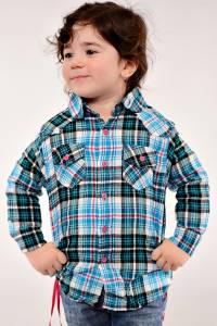 Рубашка 13011(гол.)