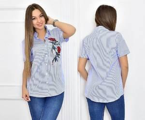 Рубашка в полоску с коротким рукавом Т5462