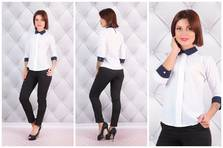 Блуза Н8549
